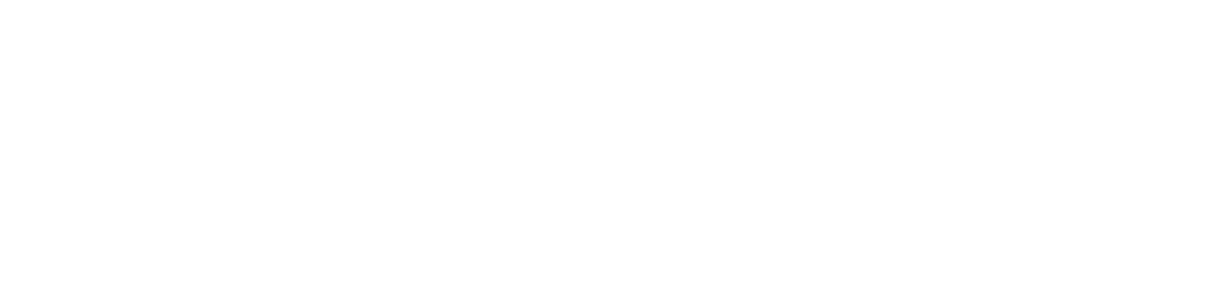 Magnetic Technologies Ltd.
